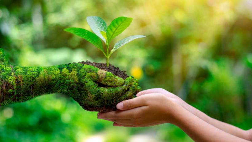 Ecologie et Environment